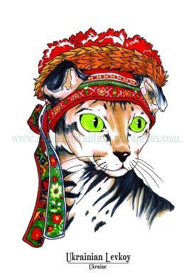 Feline Origins: Ukrainian Levkoy