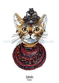 Feline origins: the Sokoke
