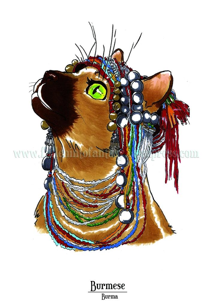 Feline Origins: Burmese